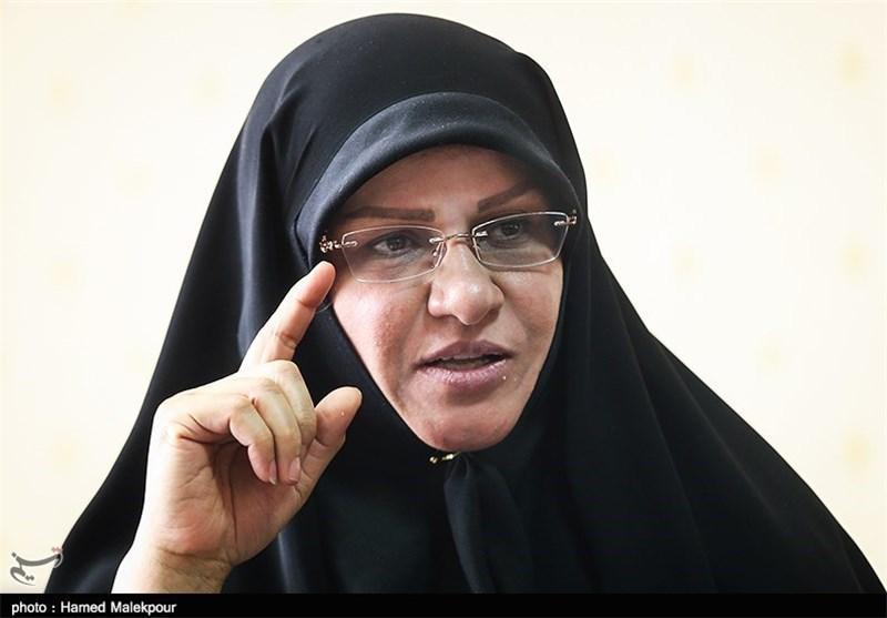 بهره گیری از ظرفیت 5میلیون ایرانی خارج نشین برای امورات داوطلبانه کشور