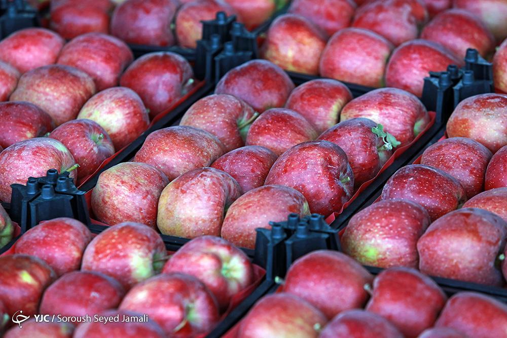نحوه عرضه میوه شب عید سال جاری اعلام شد ، پای میوه های لوکس به هفت سین 99 باز می گردد!