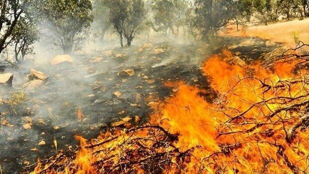 پیش بینی ماهواره ای از ریسک آتش سوزی زاگرس در هفته آینده