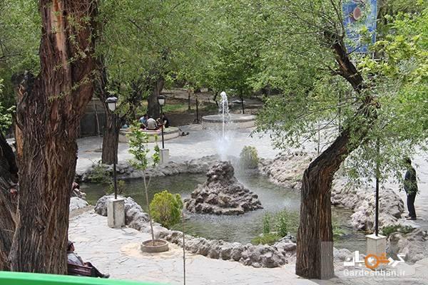 چشمه اعلا؛ تفرجگاهی خوش آب و هوا در 45 کیلومتری شرق تهران، عکس