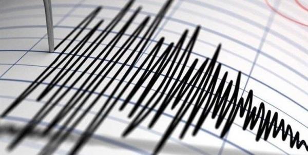 زلزله 4.6 ریشتری در بوشهر