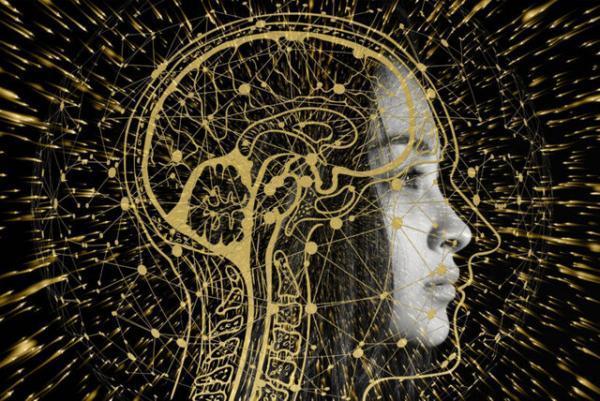 دو عملکرد مغز که با افزایش سن تقویت می شوند