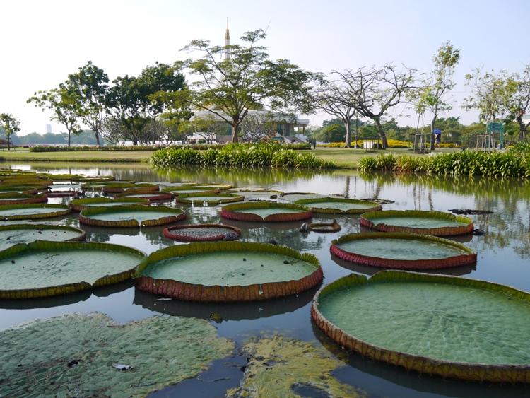 پارک سلطنتی رامای نهم بانکوک